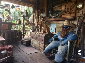 Double Eagle Saw Mill Got Wood?! We Do! West Cocoa, Florida